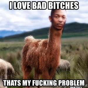 Girl, Im Kendrick Llama - i love bad bitches thats my fucking problem