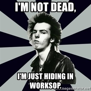 TRUE PUNK - I'm not dead, I'm just hiding in Worksop.