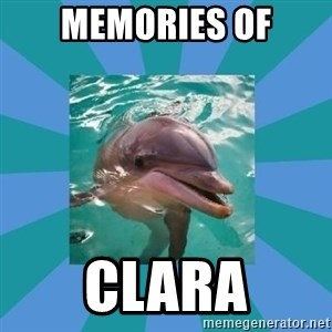 Dyscalculic Dolphin - Memories of Clara