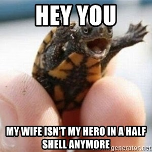 angry turtle - hey you my wife isn't my hero in a half shell anymore