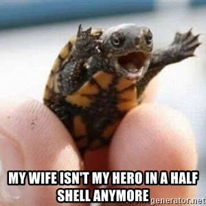 angry turtle -  my wife isn't my hero in a half shell anymore