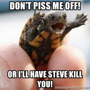 angry turtle - Don't piss me off! Or I'll have Steve kill you!
