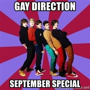 typical 1D - gay direction September Special