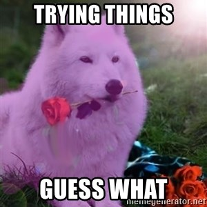 Don Courage Wolf - trying things guess what