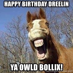 Horse - Happy birthday Dreelin ya owld bollix!