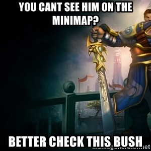 Garen - You cant see him on the minimap? Better check this bush