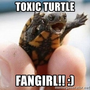 angry turtle - toxic turtle fangirl!! :)