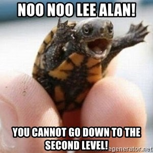 angry turtle - NOO NOO LEE ALAN! YOU CANNOT GO DOWN TO THE SECOND LEVEL!