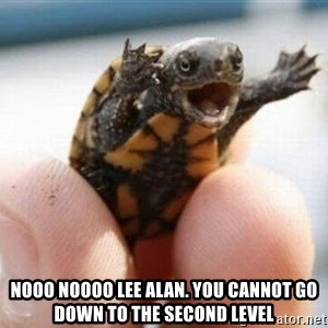 angry turtle -  nooo noooo Lee Alan. You cannot go down to the second level