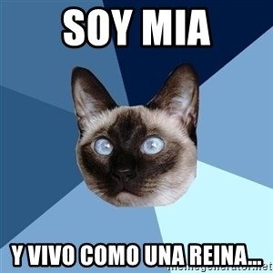 Chronic Illness Cat - Soy Mia y vivo como una reina...