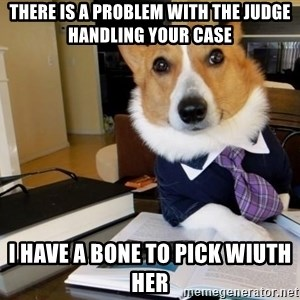 Dog Lawyer - there is a problem with the judge handling your case i have a bone to pick wiuth her