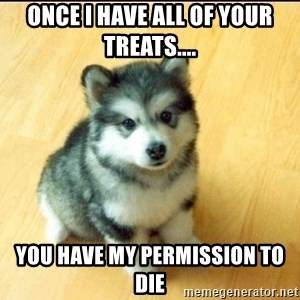 Baby Courage Wolf - once i have all of your treats.... You have my permission to die