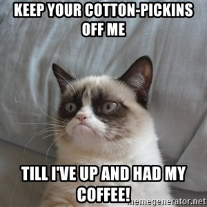 good grumpy cat 2 - Keep your cotton-pickins off me till I've up and had my coffee!