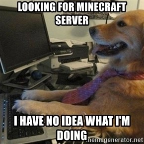 I have no idea what I'm doing - Dog with Tie - Looking for MineCraft server I have no idea what I'm doing