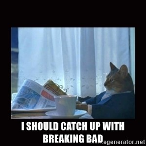 i should buy a boat cat -  I should catch up with Breaking Bad