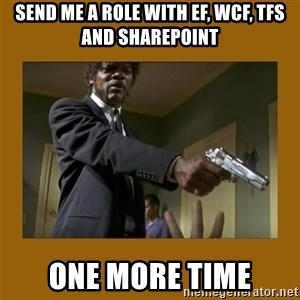 say what one more time - send me a role with ef, wcf, tfs and sharepoint one more time