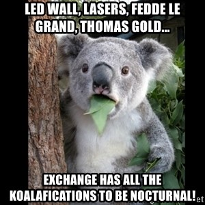 Koala can't believe it - led wall, lasers, fedde le grand, thomas gold... exchange has all the Koalafications to be Nocturnal!