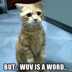 Sad Kitty -  but... wuv IS a word...