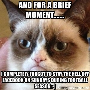 Angry Cat Meme - and for a brief moment....... I completely forgot to stay the hell off Facebook on Sundays during football season :-|