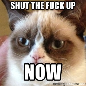 Angry Cat Meme - SHUT THE FUCK UP NOW