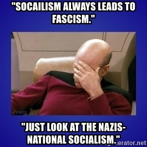 """Picard facepalm  - """"Socailism always leads to fascism."""" """"Just look at the Nazis- national socialism."""""""