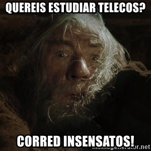 gandalf run you fools closeup - quereis estudiar telecos? Corred insensatos!