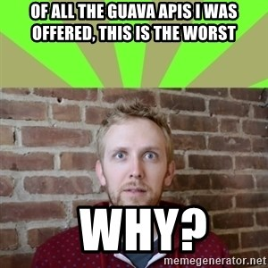 wikiryan - of all the guava apis i was offered, this is the worst   why?
