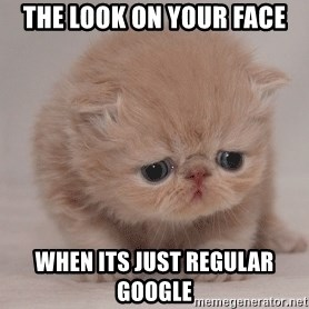 Super Sad Cat - The look on your face when its just regular Google