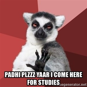 Chill Out Lemur -  padhi plzzz yaar i come here for studies