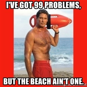 david hasselhoff - I've got 99 problems, But the beach ain't one.