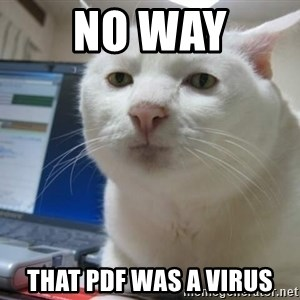 Serious Cat - No way That PDF was a virus