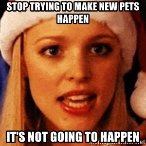 trying to make fetch happen  - stop trying to make new pets happen it's not going to happen