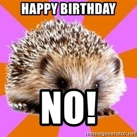 Homeschooled Hedgehog - Happy birthday No!