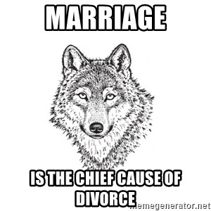 Sarcastic Wolf - Marriage is the chief cause of divorce