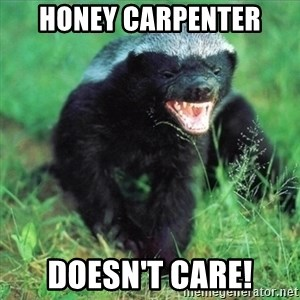 Honey Badger Actual - Honey Carpenter Doesn't care!
