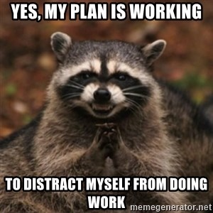 evil raccoon - yes, my plan is working to distract myself from doing work