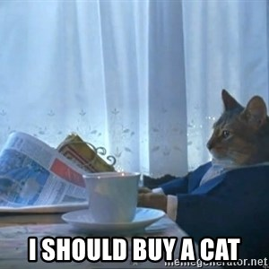 One Percent Cat -  I should buy a cat