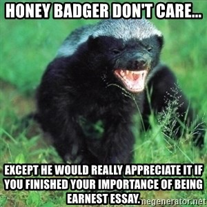 Honey Badger Actual - Honey Badger don't care... Except he would really appreciate it if you finished your importance of being earnest essay.