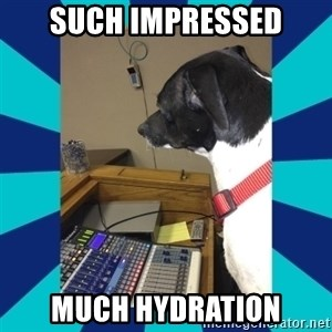 doge - Such impressed Much hydration