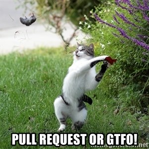 GTFO -  Pull Request or gtfo!
