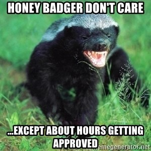 Honey Badger Actual - honey badger don't care ...except about hours getting approved