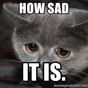 Sadcat - HOW SAD  IT IS.