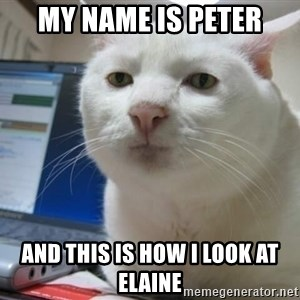 Serious Cat - My name is Peter And this is how i look at elaine