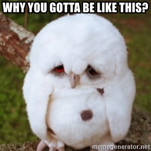 Sad Owl Baby - Why you gotta be like this?