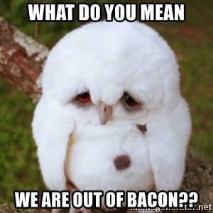 Sad Owl Baby - WHAT DO YOU MEAN WE ARE OUT OF BACON??