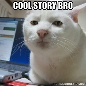 Serious Cat - Cool Story Bro