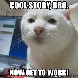 Serious Cat - COOL STORY, BRO. NOW GET TO WORK!