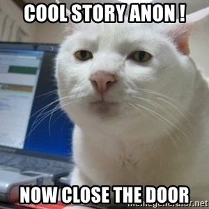 Serious Cat - Cool story Anon ! Now close the door