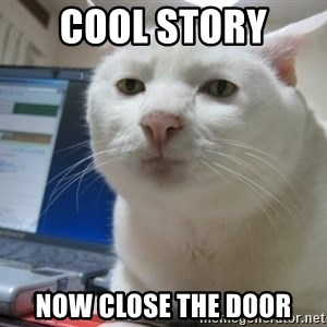 Serious Cat - cool story  Now close the door