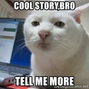 Serious Cat - cool story,bro tell me more